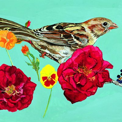 Sparrow and the Roses