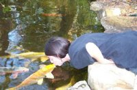 Shalimar's Fish Kingdom and the kiss
