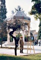 Beautiful Majnun Tree in winter